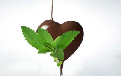 Recette mousse au chocolat sans sucre
