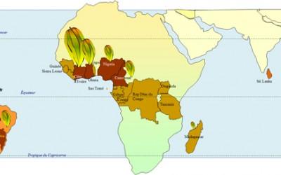 D'où vient le cacao ?